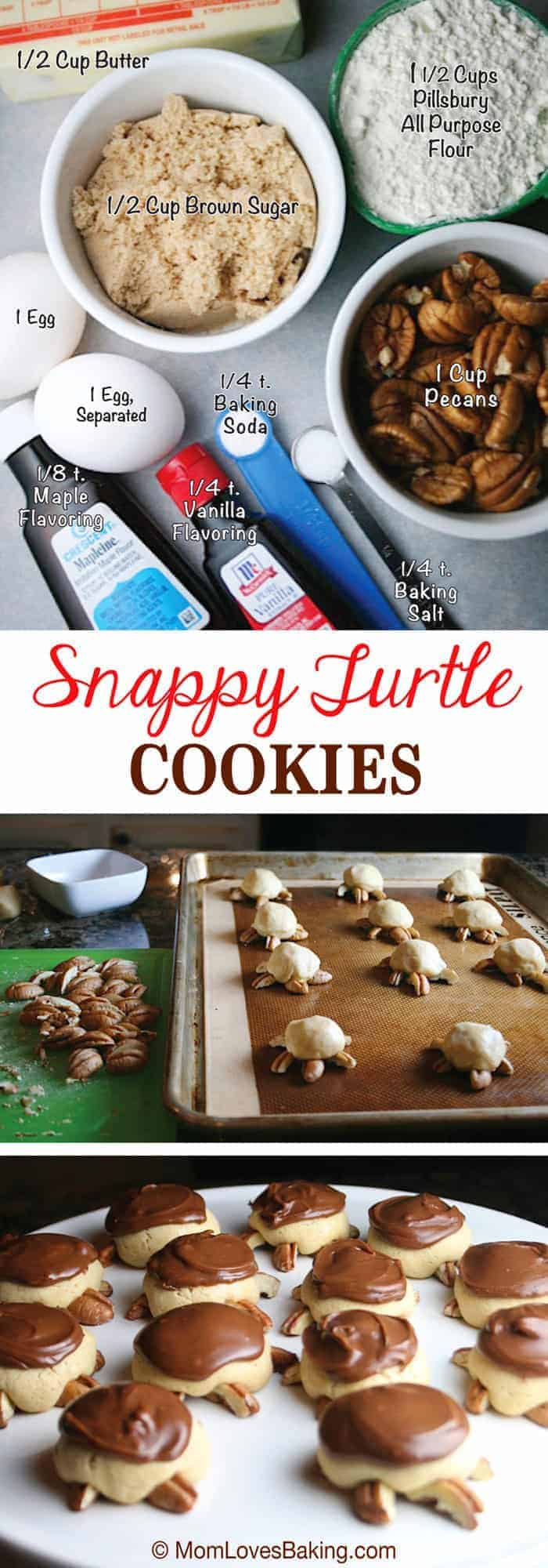Snappy-Turtle-Cookies