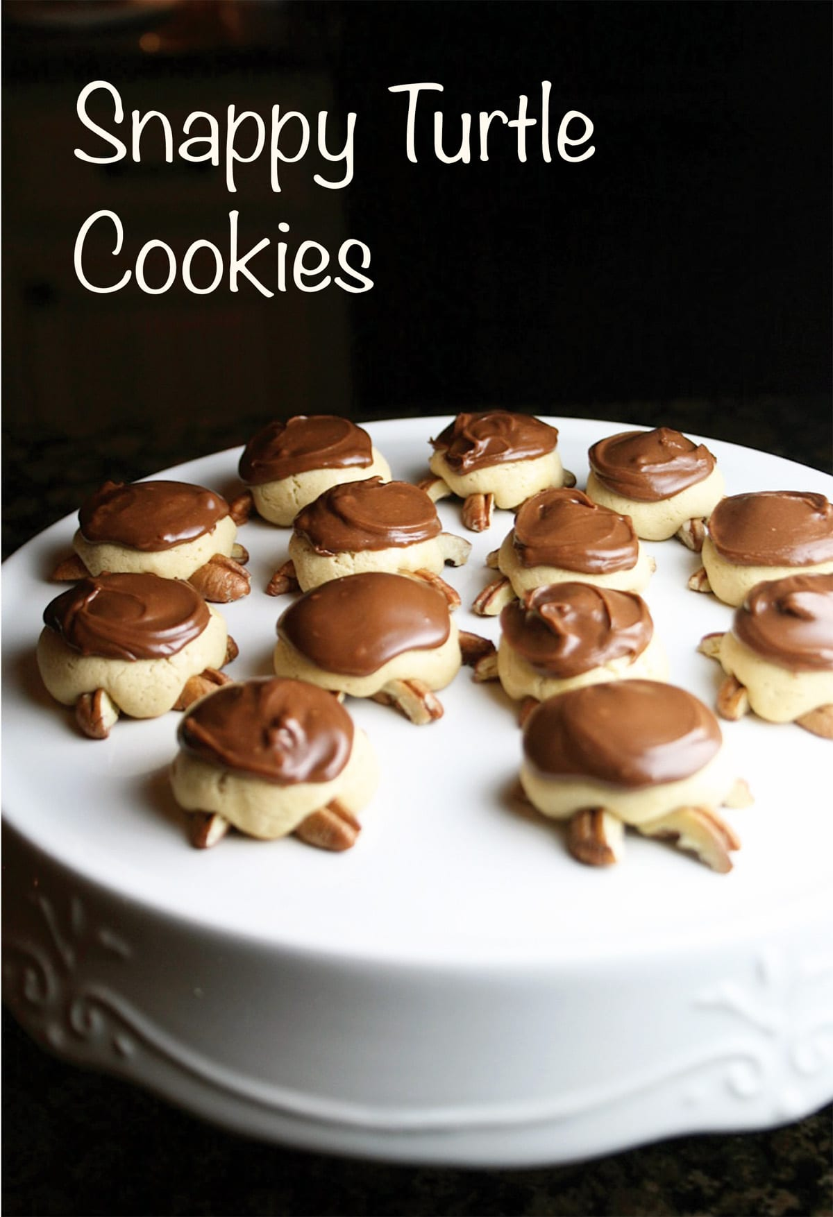 Snappy Turtle Cookies are turtle shaped sugar cookies with pecans and ...