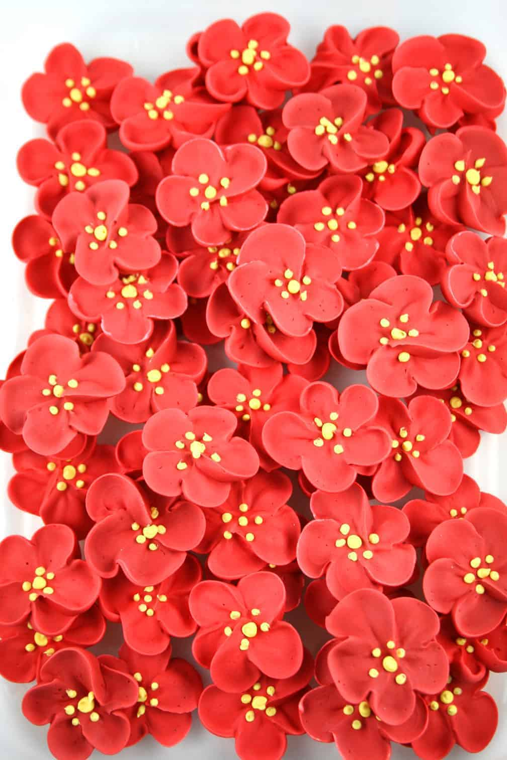 6_Flowers