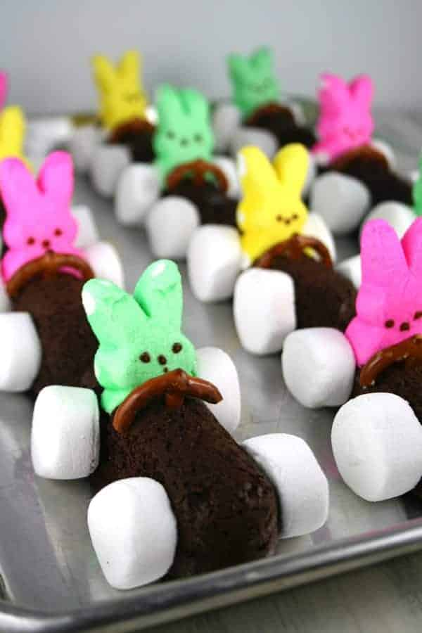 Chocolate-Easter-Bunny-Race-Cars