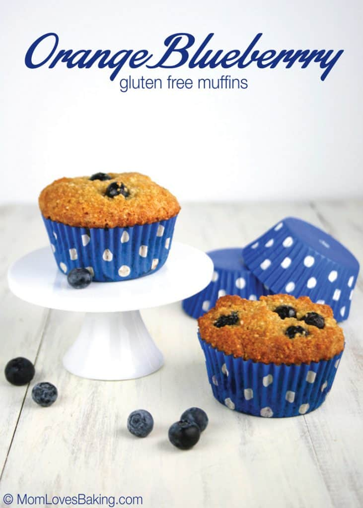 Orange-Blueberry-Gluten-Free-Muffins