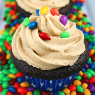Chocolate Sunbutter Cupcakes
