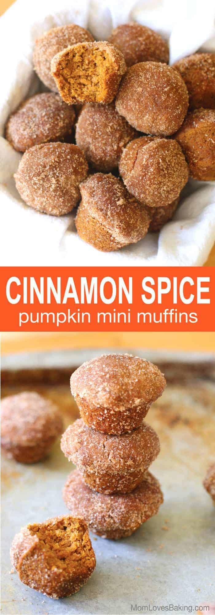 Cinnamon-Spice-Long