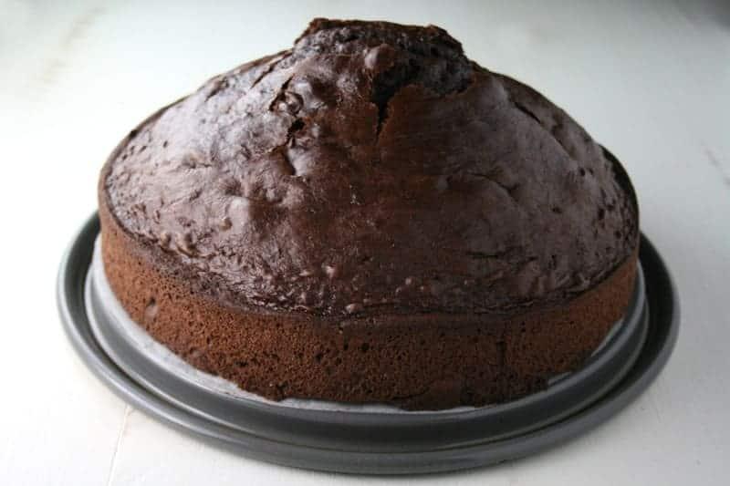 Mint Chocolate Chip Ice Cream Cake Mom Loves Baking