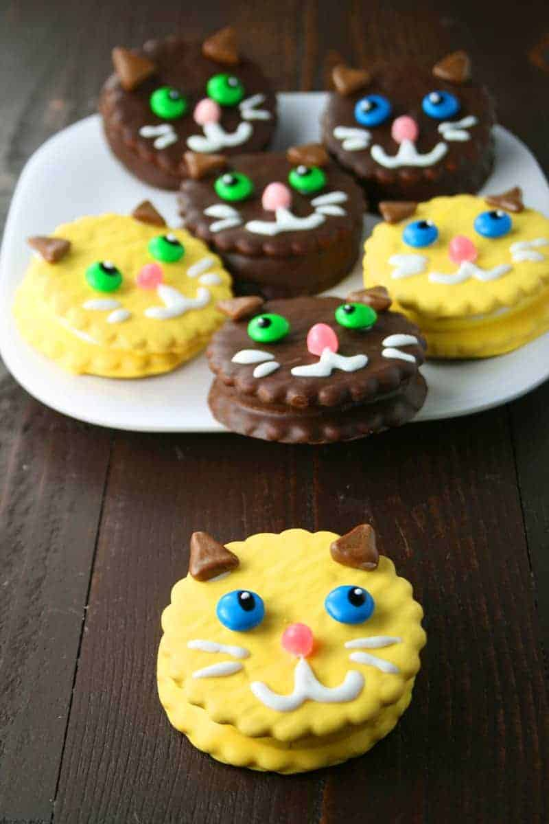 Kitty Cat Moon Pies