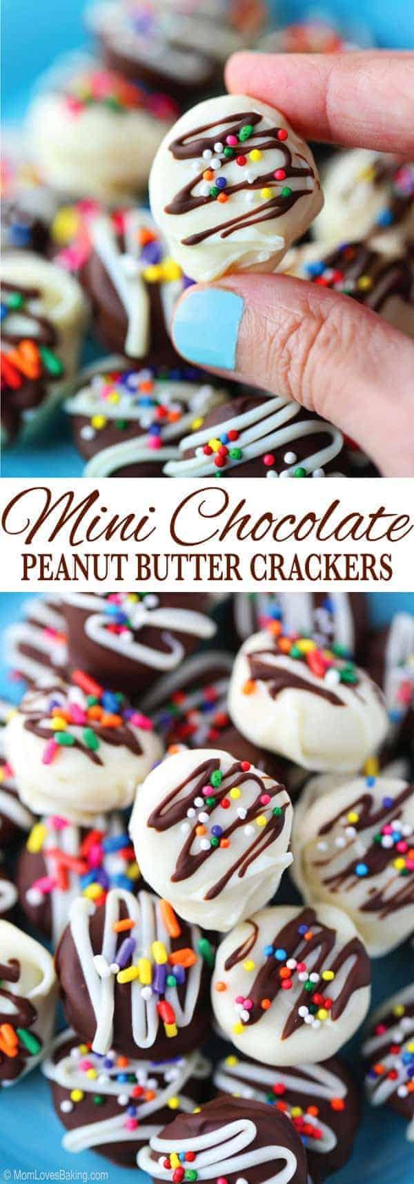 Mini Chocolate Peanut Butter Crackers
