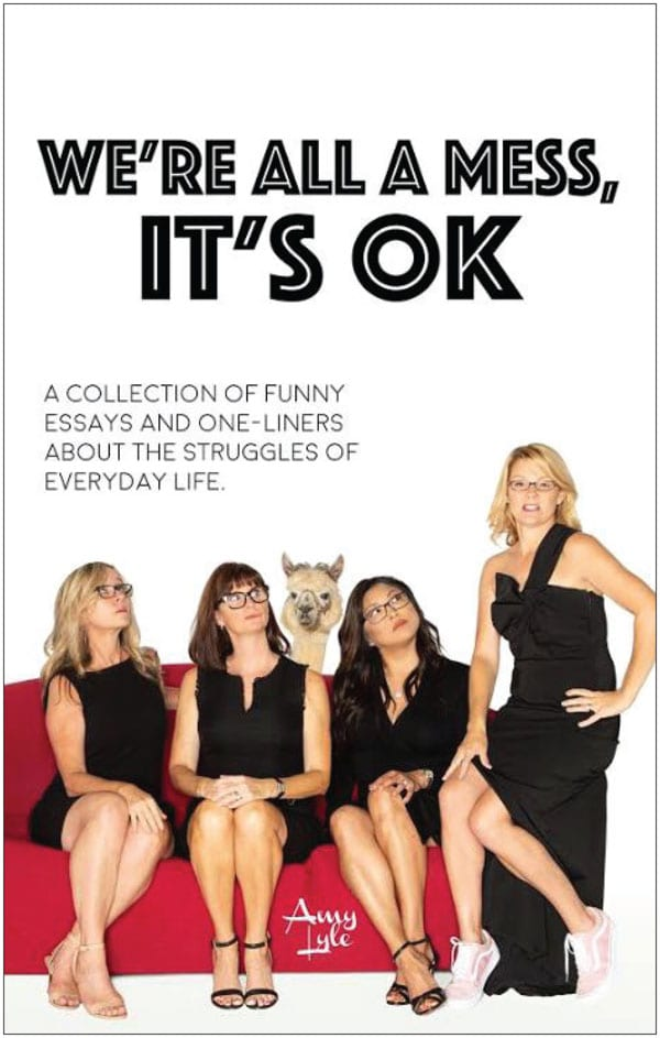 A funny book - we're all a mess, it's ok
