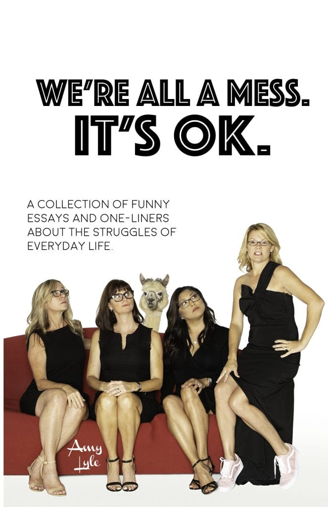 We're all a mess, it's ok book