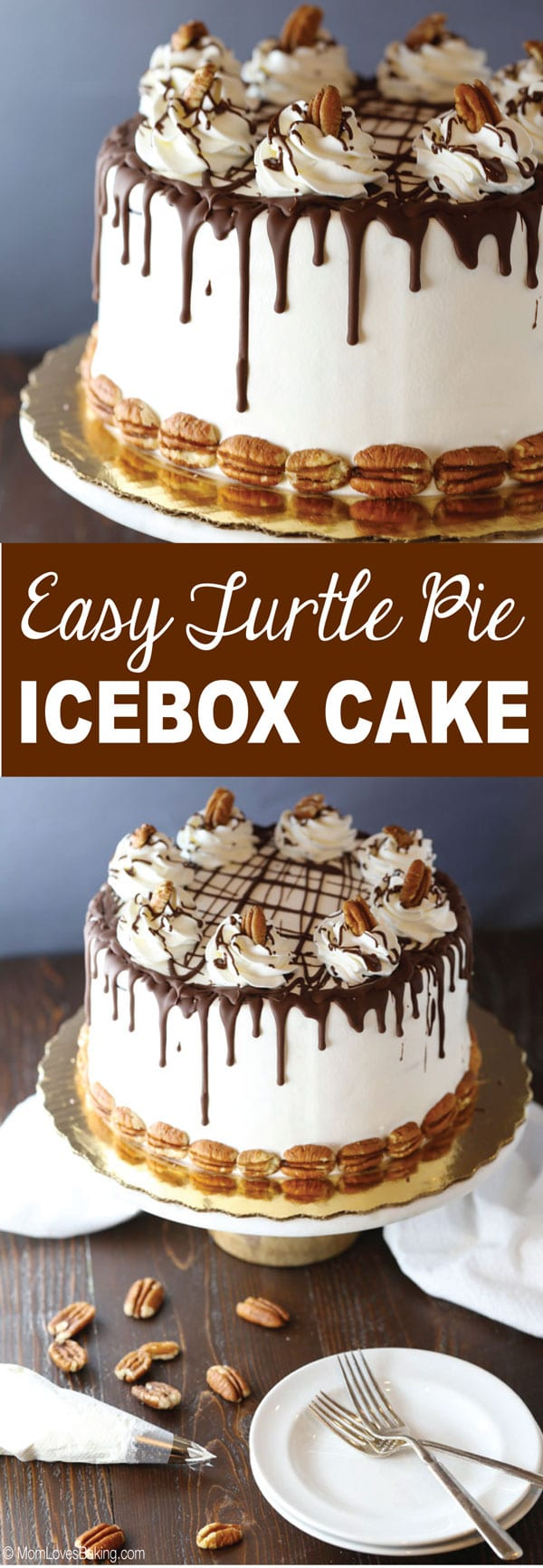 Easy Turtle Pie Ice Box Cake