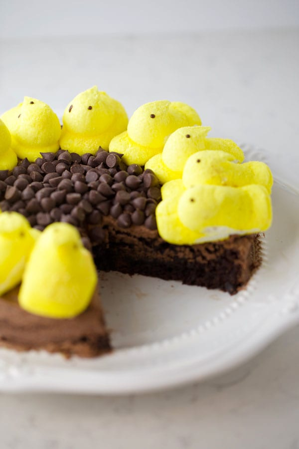 Brownie cake with chocolate frosting and peeps on top