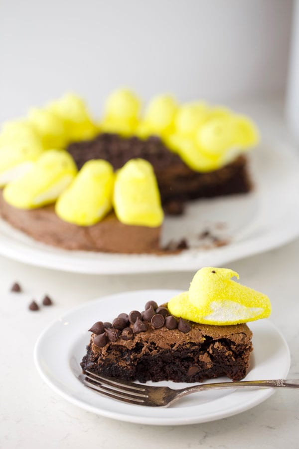 Yellow peeps on brownies baked in round pan.