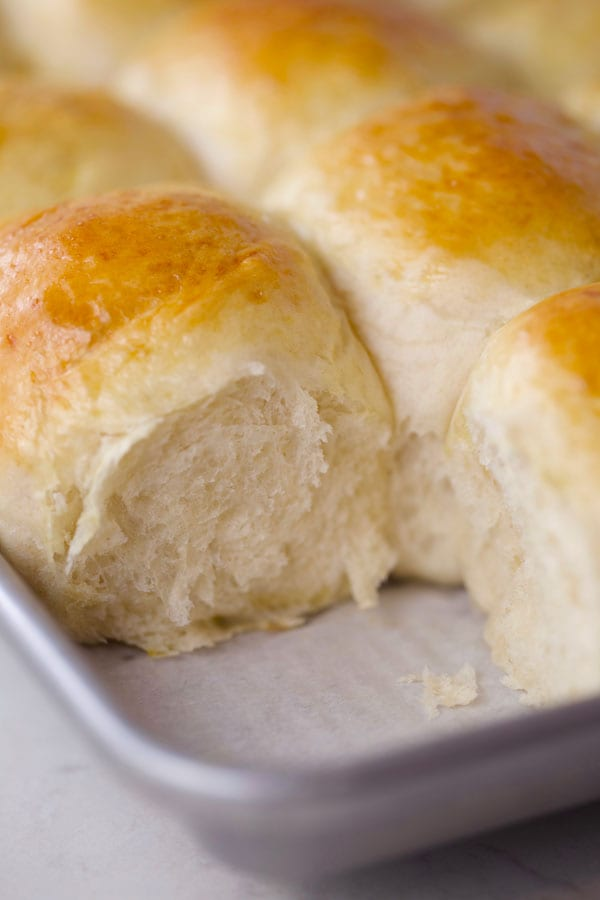 Fluffy homemade yeast dinner rolls from scratch