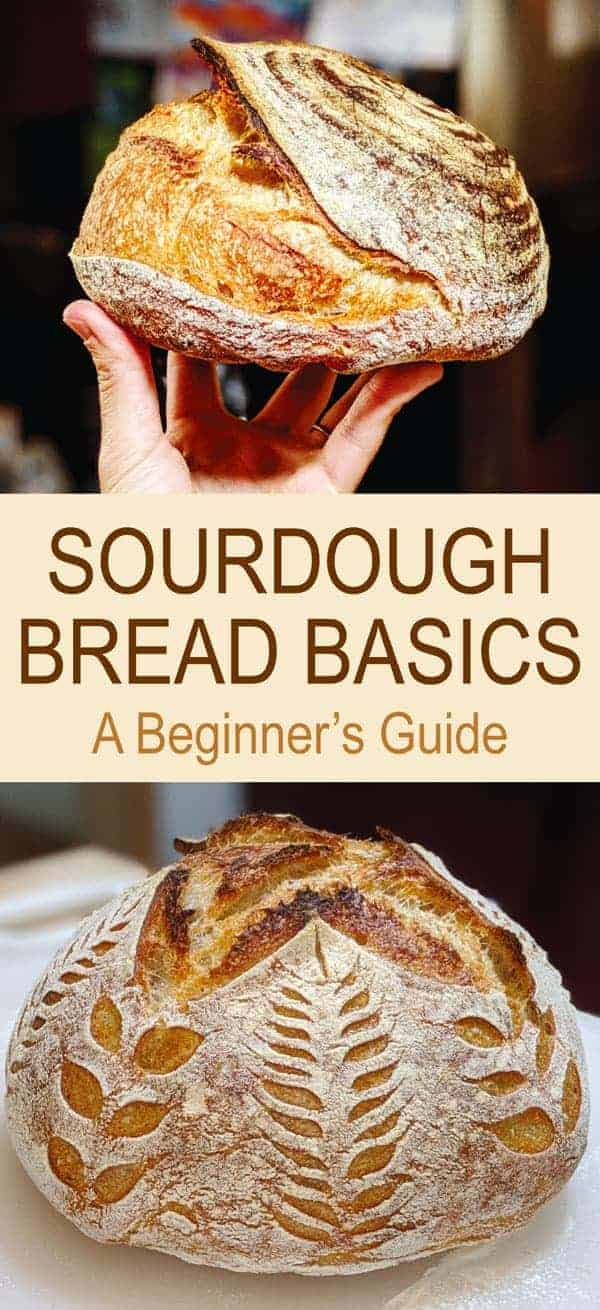 Sourdough Bread Basics: A Beginner's Guide