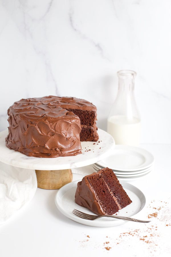Chocolate fudge cake and cake slice