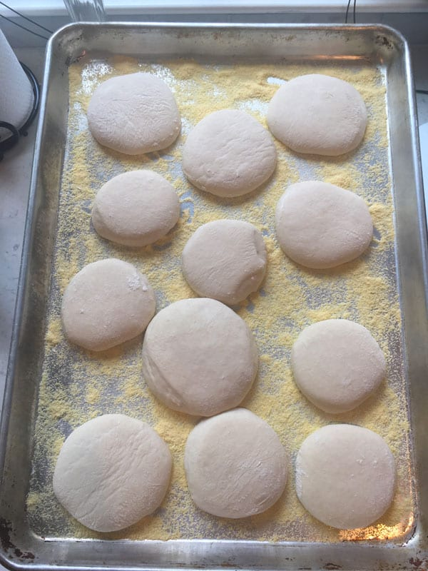 Resting the dough for Sourdough English Muffins