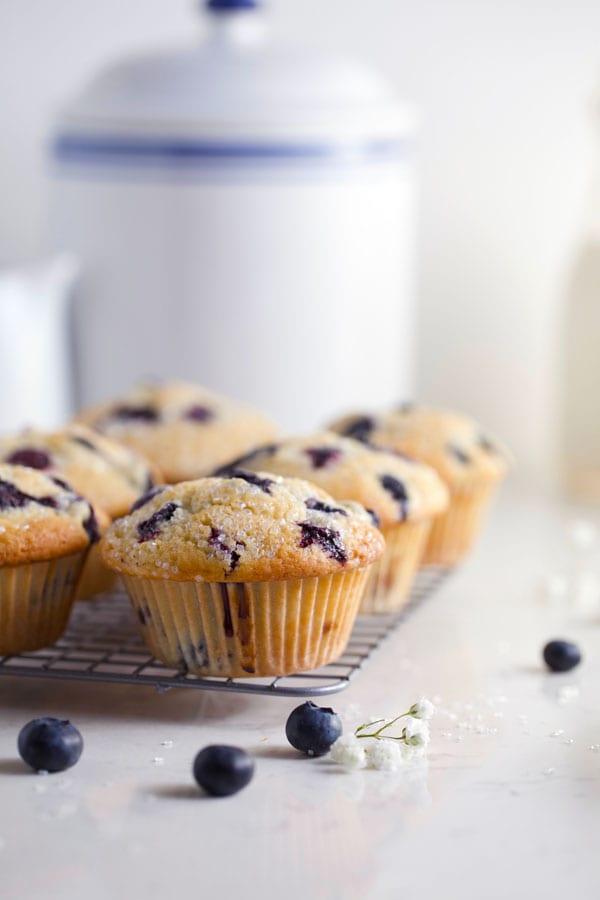 Close up of sourdough lemon blueberry muffins