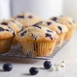 Close up of a lemon blueberry muffin