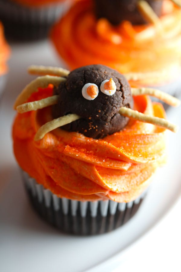 Close up of chocolate truffle spider on Halloween spider cupcakes