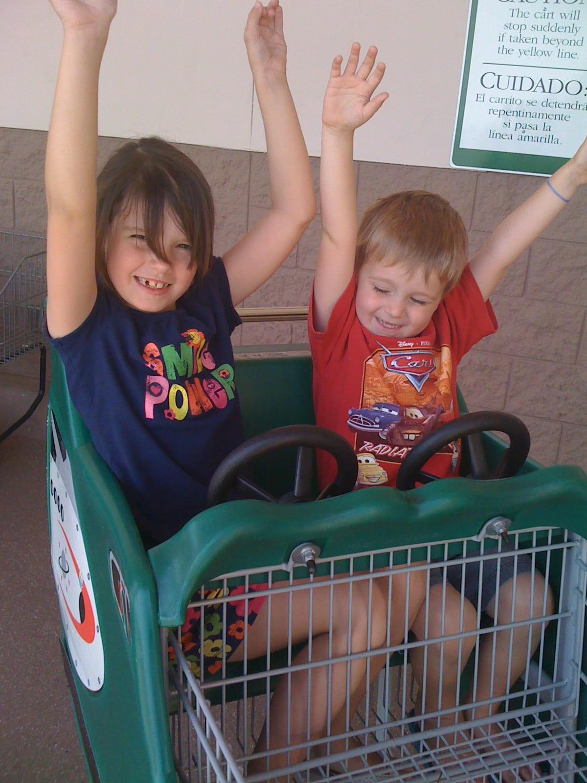 Kids in Publix shopping cart